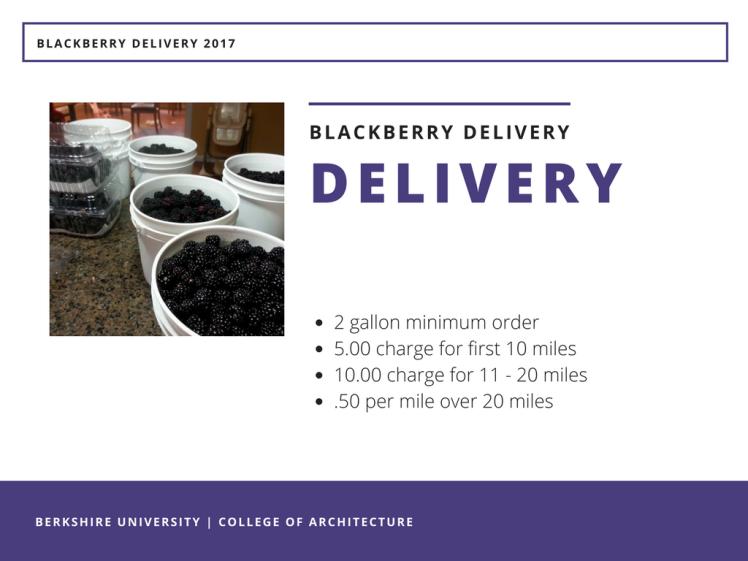 Blackberry Season 2017 - Delivery Service